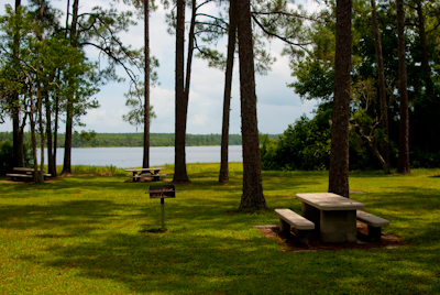 Lake Dorr Picnic Area