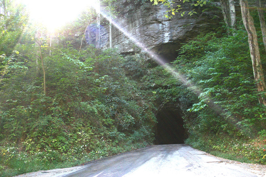 Image of road and tunnel entrance with sun streaming through trees.