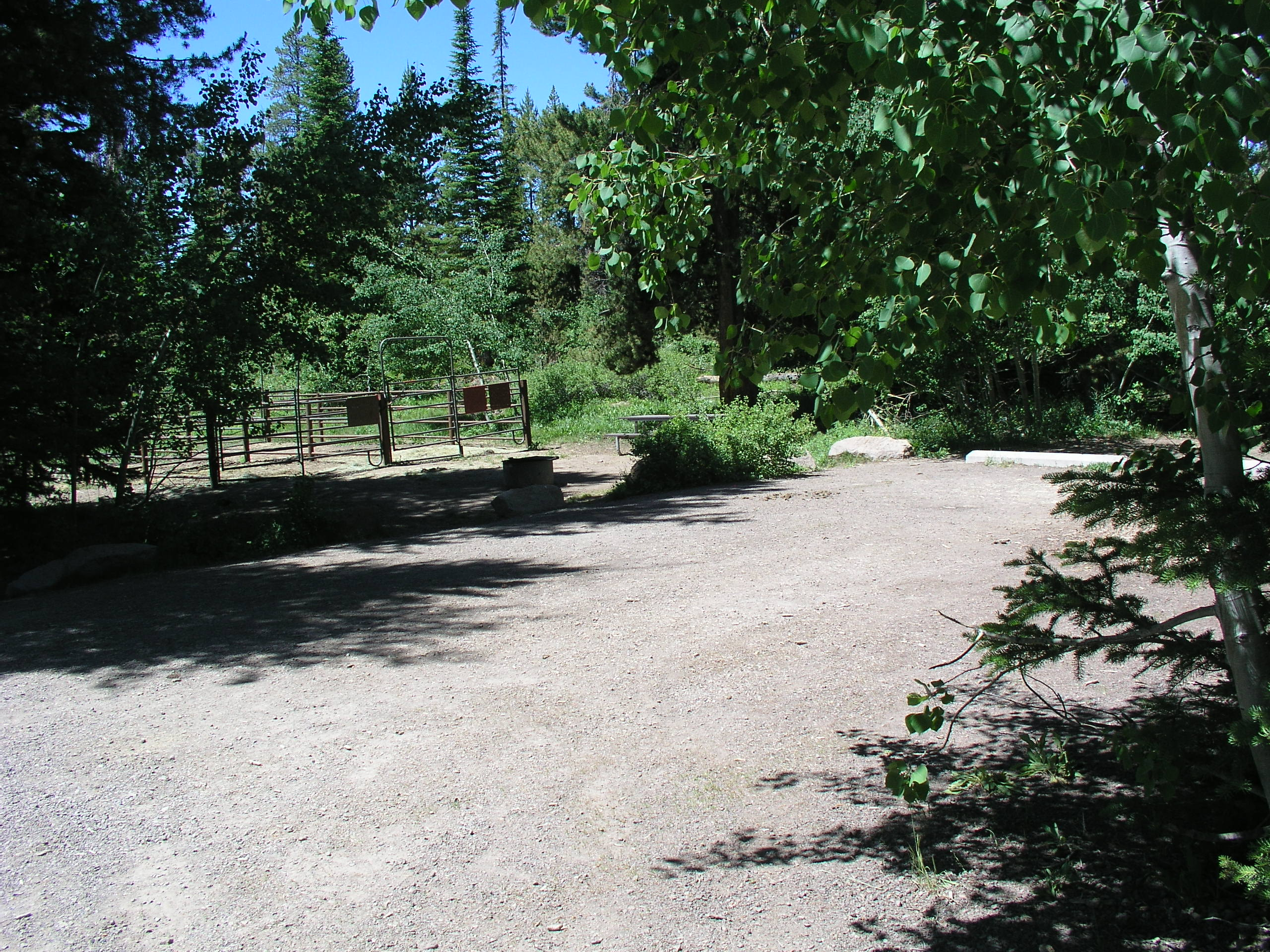 Corrals, picnic table, fire ring, trees