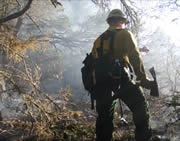photo of firefigher in smoky wooded surroundings