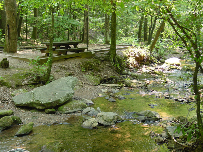 Picnic table along the bank at Tallulah River Campground