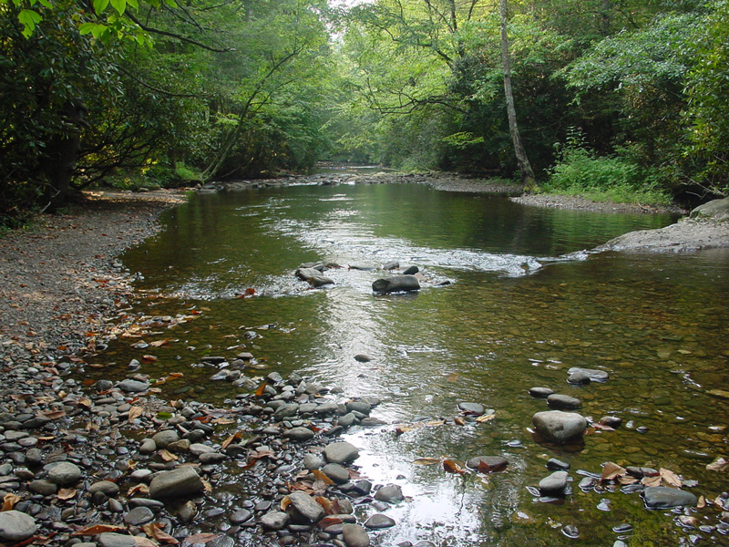 The peaceful, meandering Tallulah River at the Tallulah River Campground