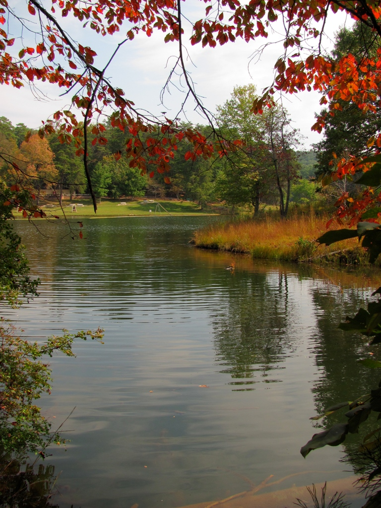 View of Lake Russell through fall foliage of red and purple