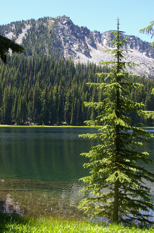 HIg mountain lake lined iwht pine and fir treees with rocky peak in background
