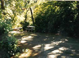 Photo of Eel Creek Campground