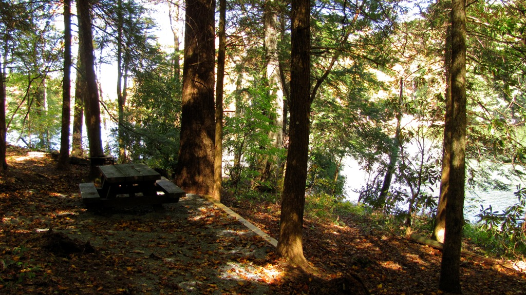 a picnic table close to Lake Conasauga in the fall