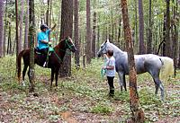 Horse riders conversing in the forest
