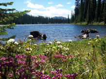 Twin Lakes on the Darby Ranger District