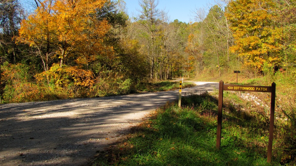 gravel road leading to Cottonwood Patch campground