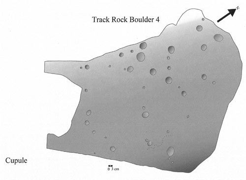 A diagram of  cupules on Track Rock Boulder 4