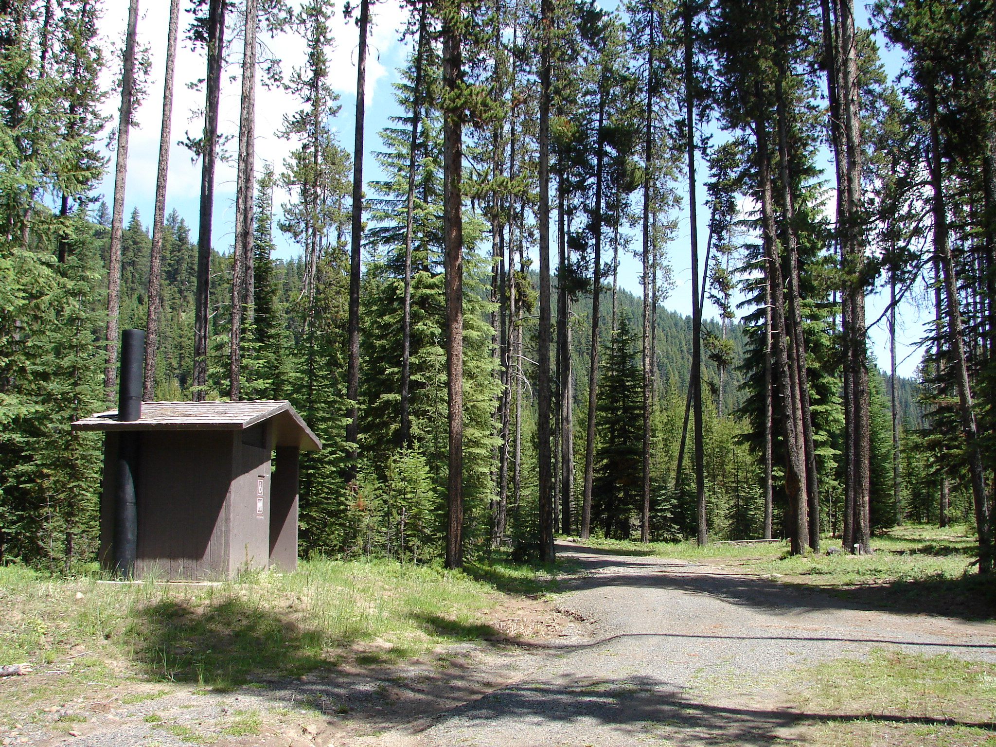 Baldy Creek Trailhead toilet in a pine forest setting