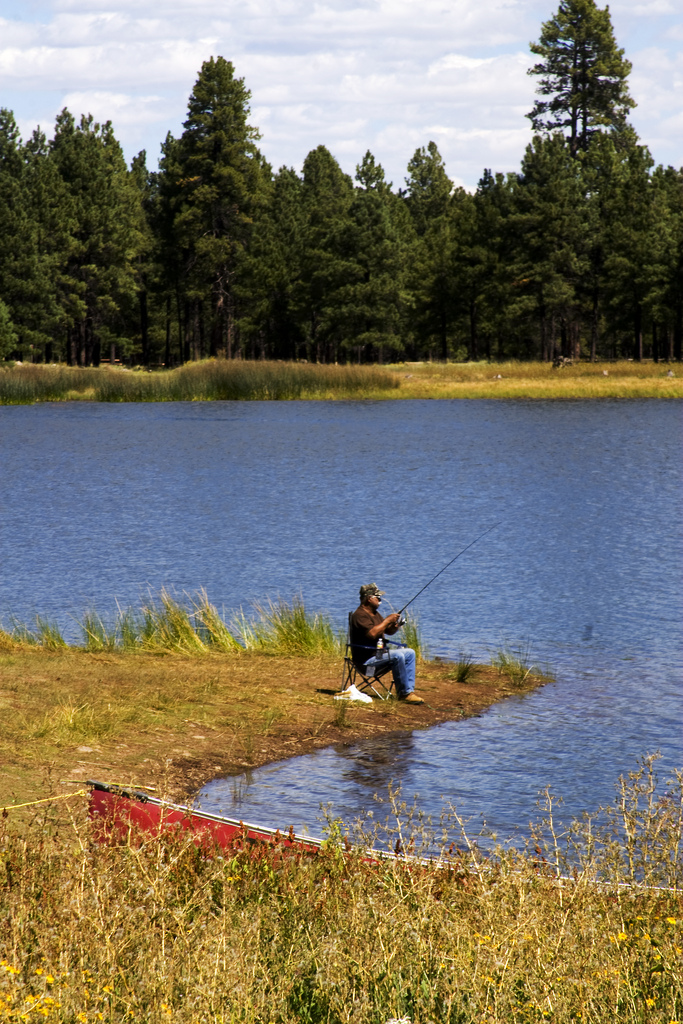 Man fishing at White Horse Lake Campground, Arizona.
