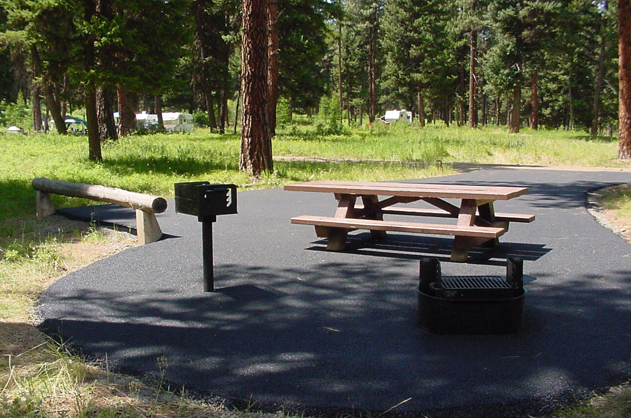 Accessible campsite at Bird Track Springs Campground