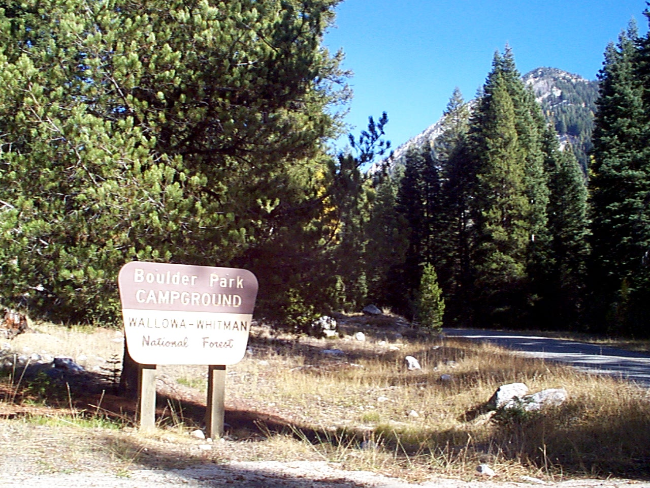 Entrance sign in pine forest at Boulder Park Campground
