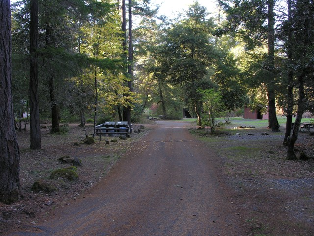 Lower loop campsites in Pearch Creek Campground