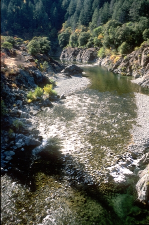 Shallow water during low flow on the Salmon River