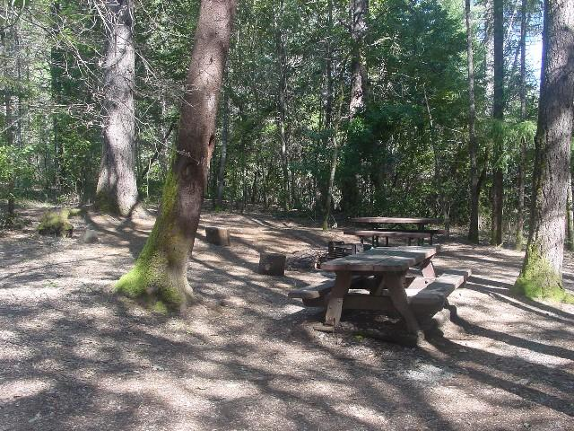 Campsites in Oak Bottom Campground
