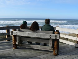 People sitting on wooden bench viewing surf from wheelchair accessible platform