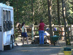 People standing by corrals with horses at Wildmare Horse Camp