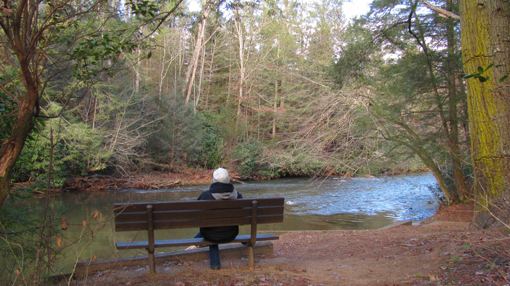 Woman enjoys the peaceful view of the Toccoa River from a bench at Deep Hole Campground