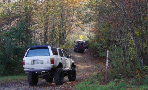 OHV Riding landing photo. A caravan sets off up a trail at Beasley Falls for an OHV adventure.