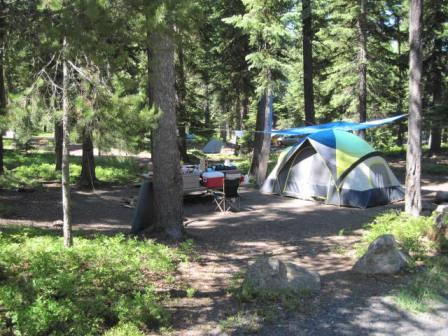 Typical campsite in Strawberry Campground