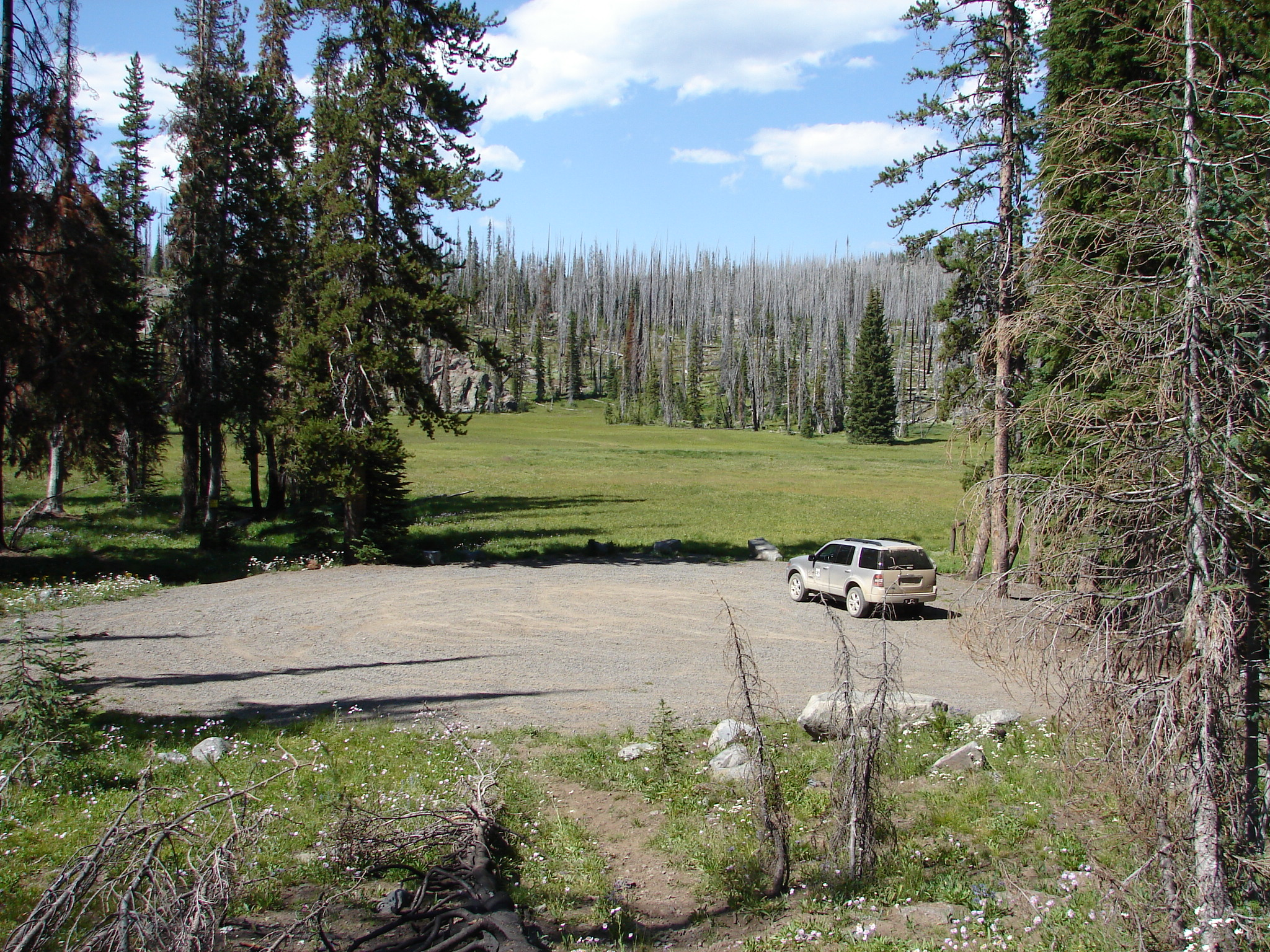 Trucks parked at Deadman Canyon Trailhead with meadow in background