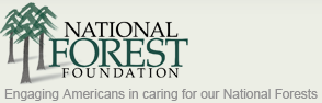 "Three trees next to the words ""National Forest Foundation."""