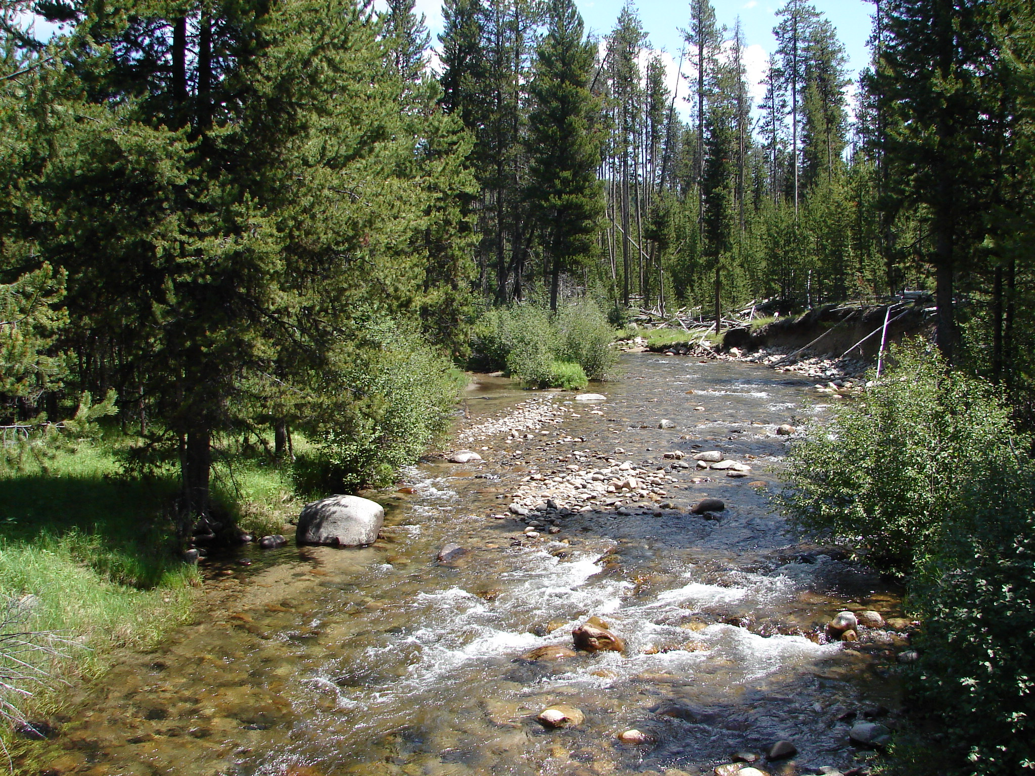 wallowa whitman national forest special places wild and scenic north fork john day river