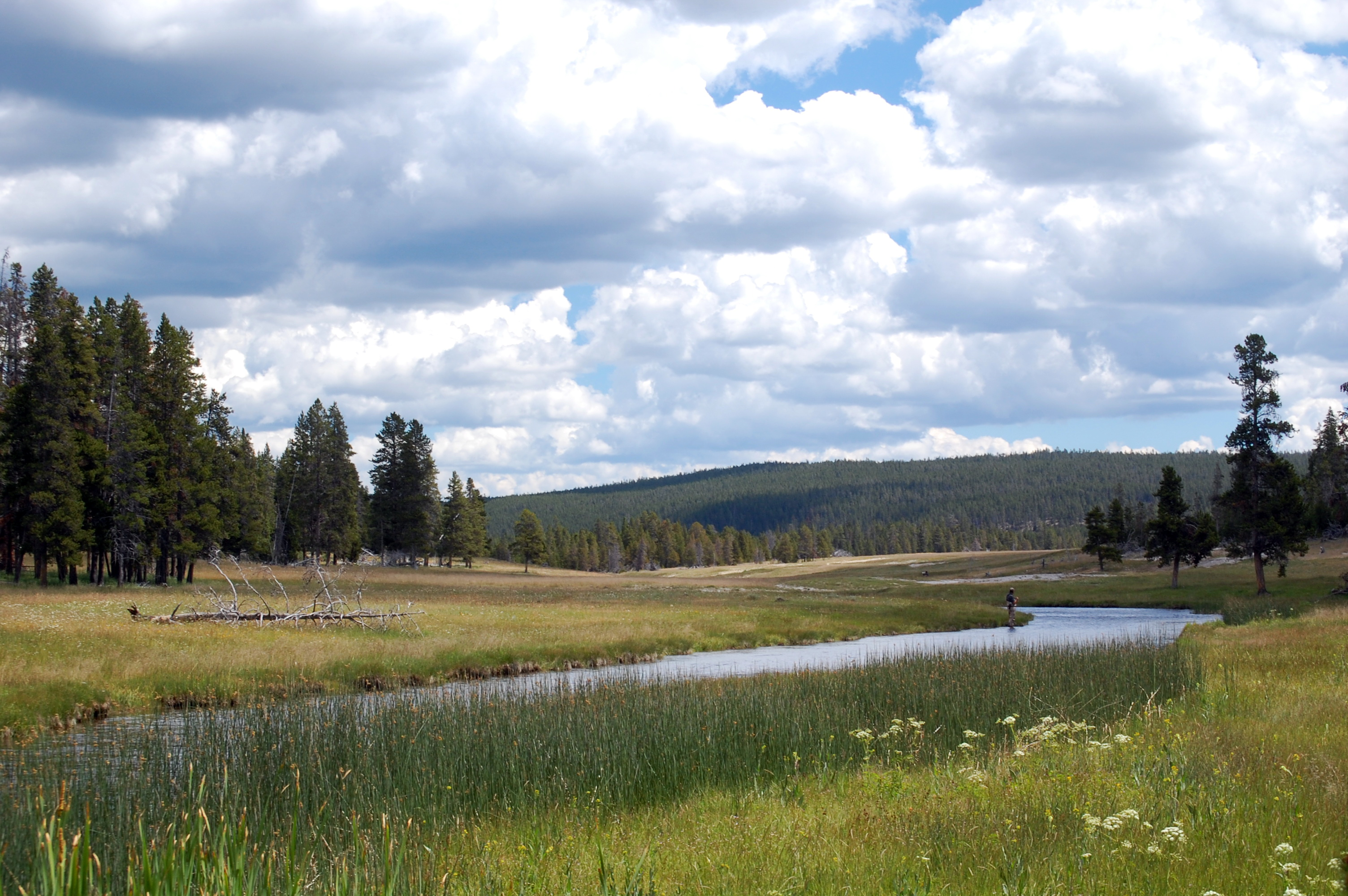 Nez Perce Creek, Yellowstone National Park