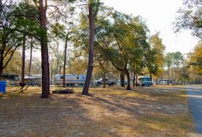 Salt Springs Campground RV spaces