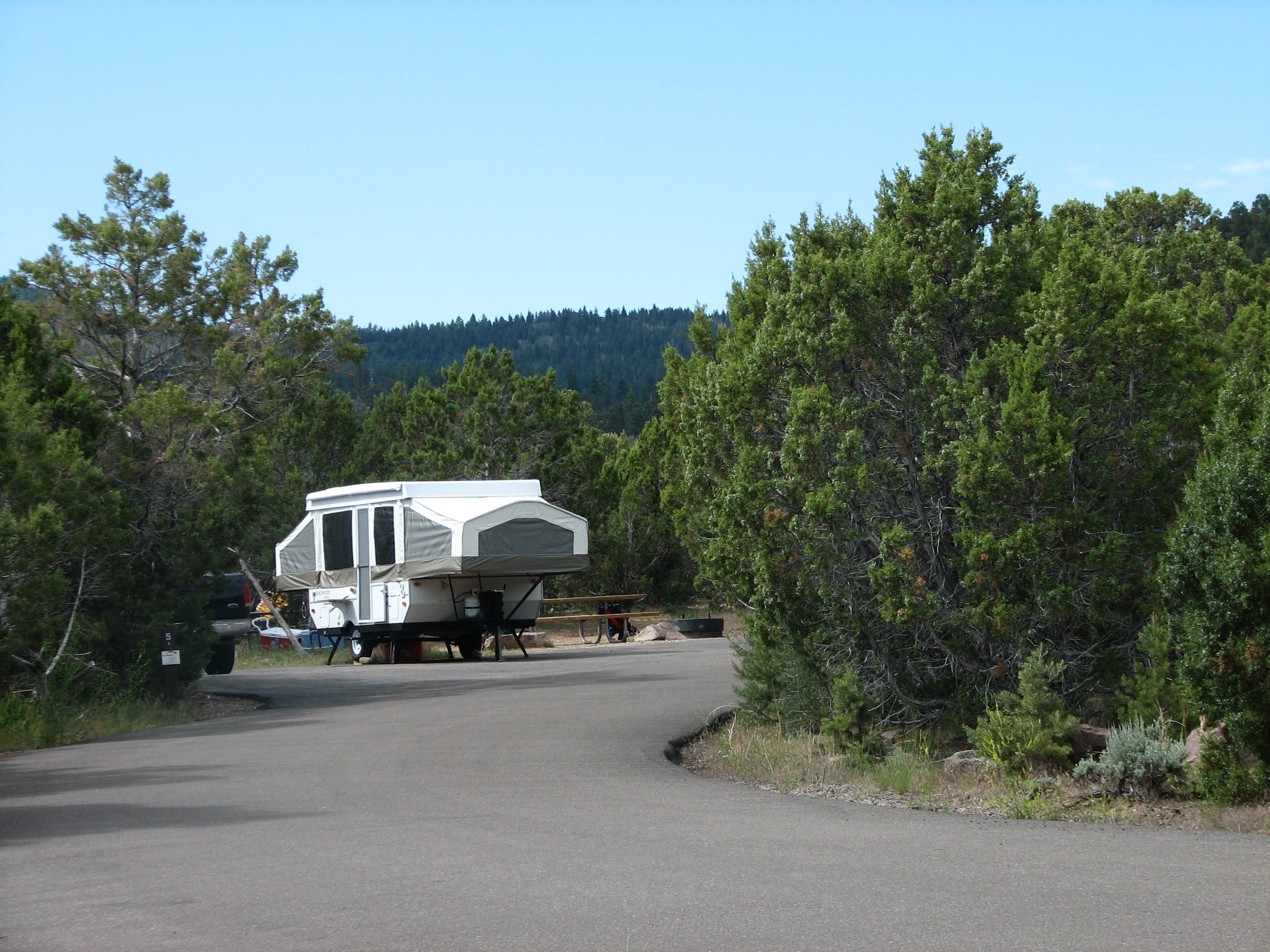 Photo of a site at Cedar Springs Campground.