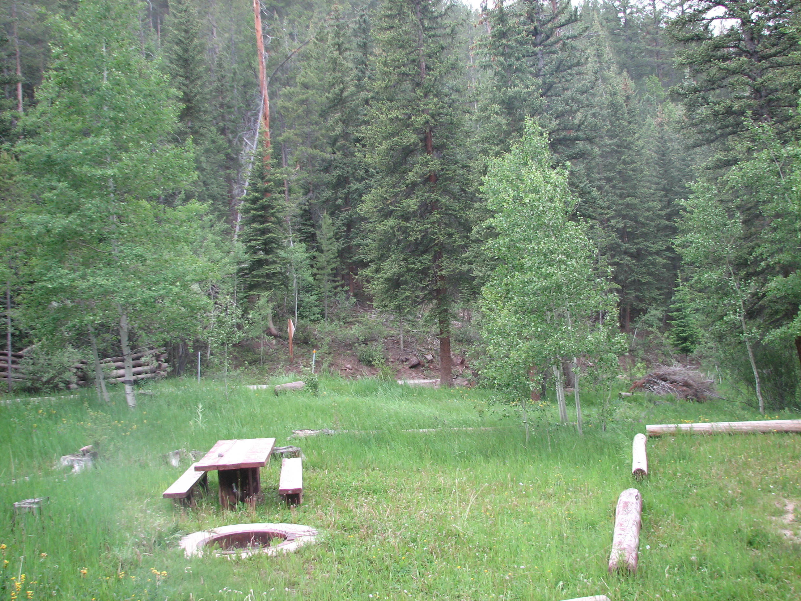 Photo of a site at the Deep Creek Campground.