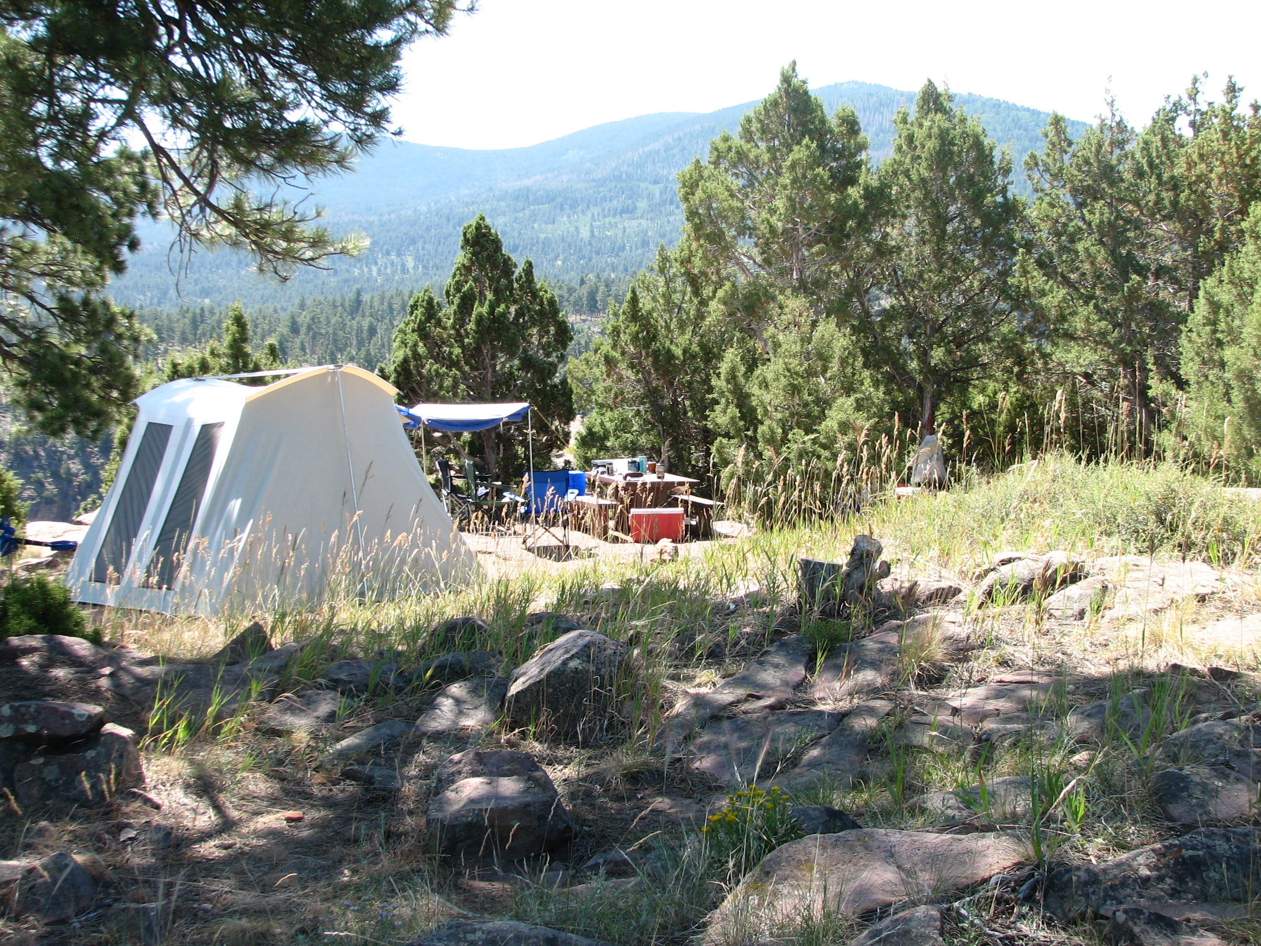 Photo of a site at the Firefighters Campground.