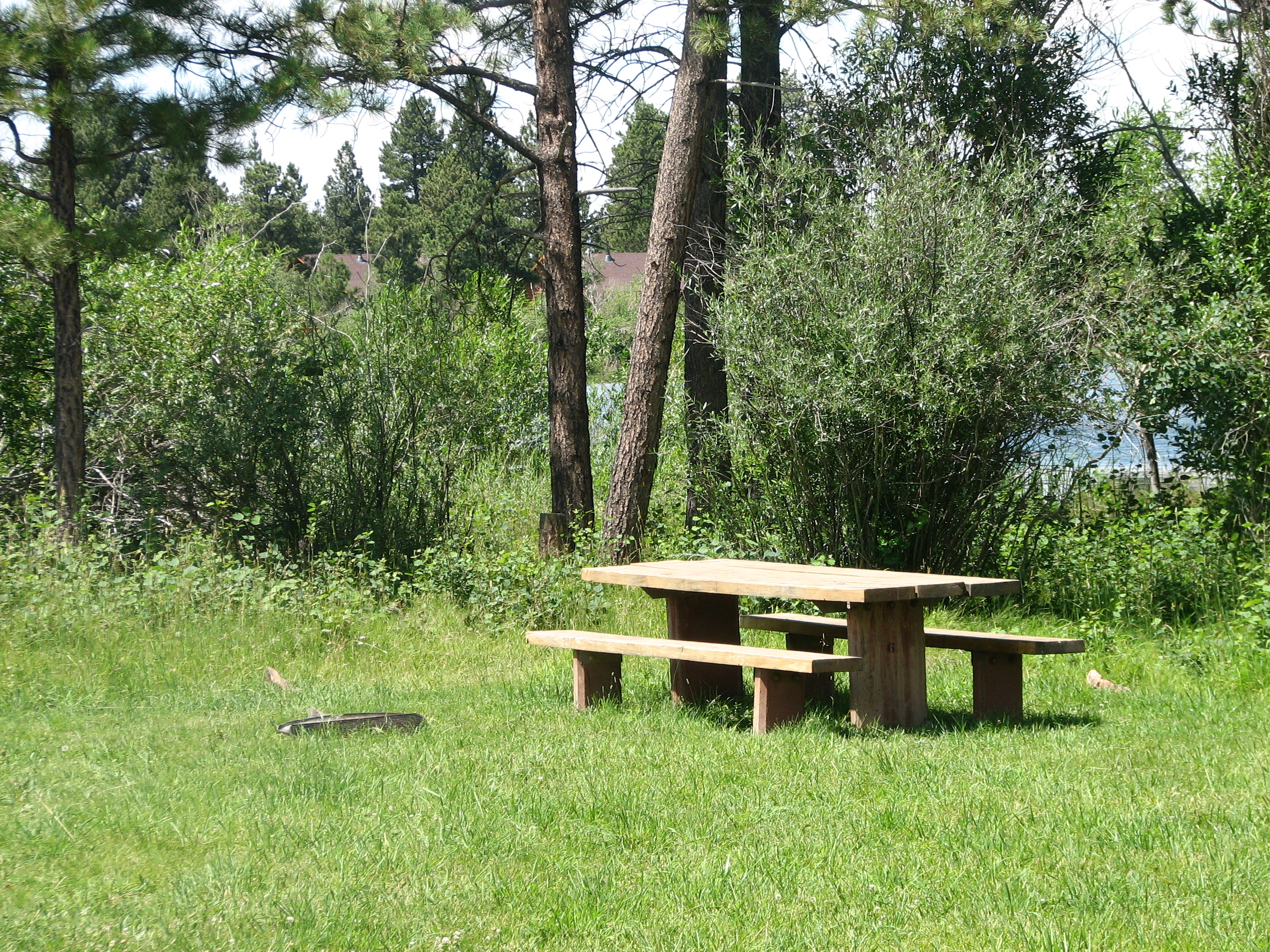 Photo of a site at the Greens Lake Campground.