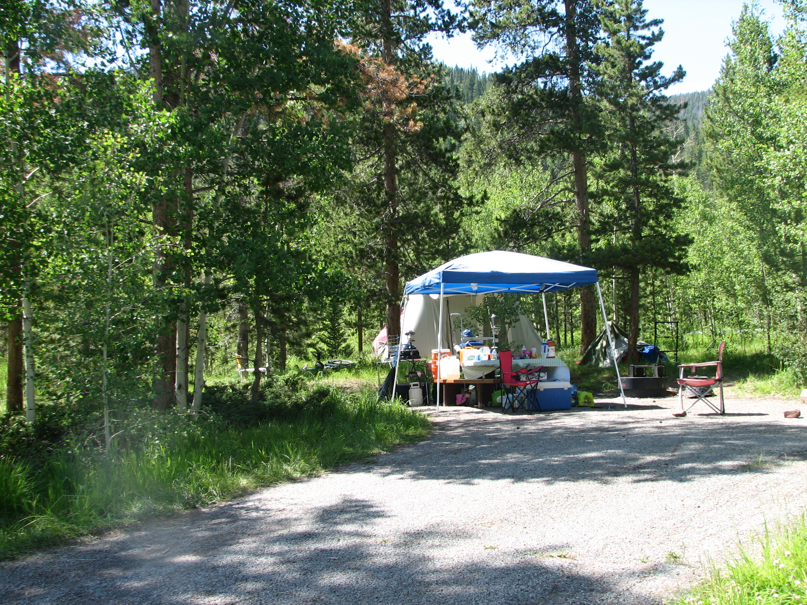 Photo of a site at the Lodgepole Campground.