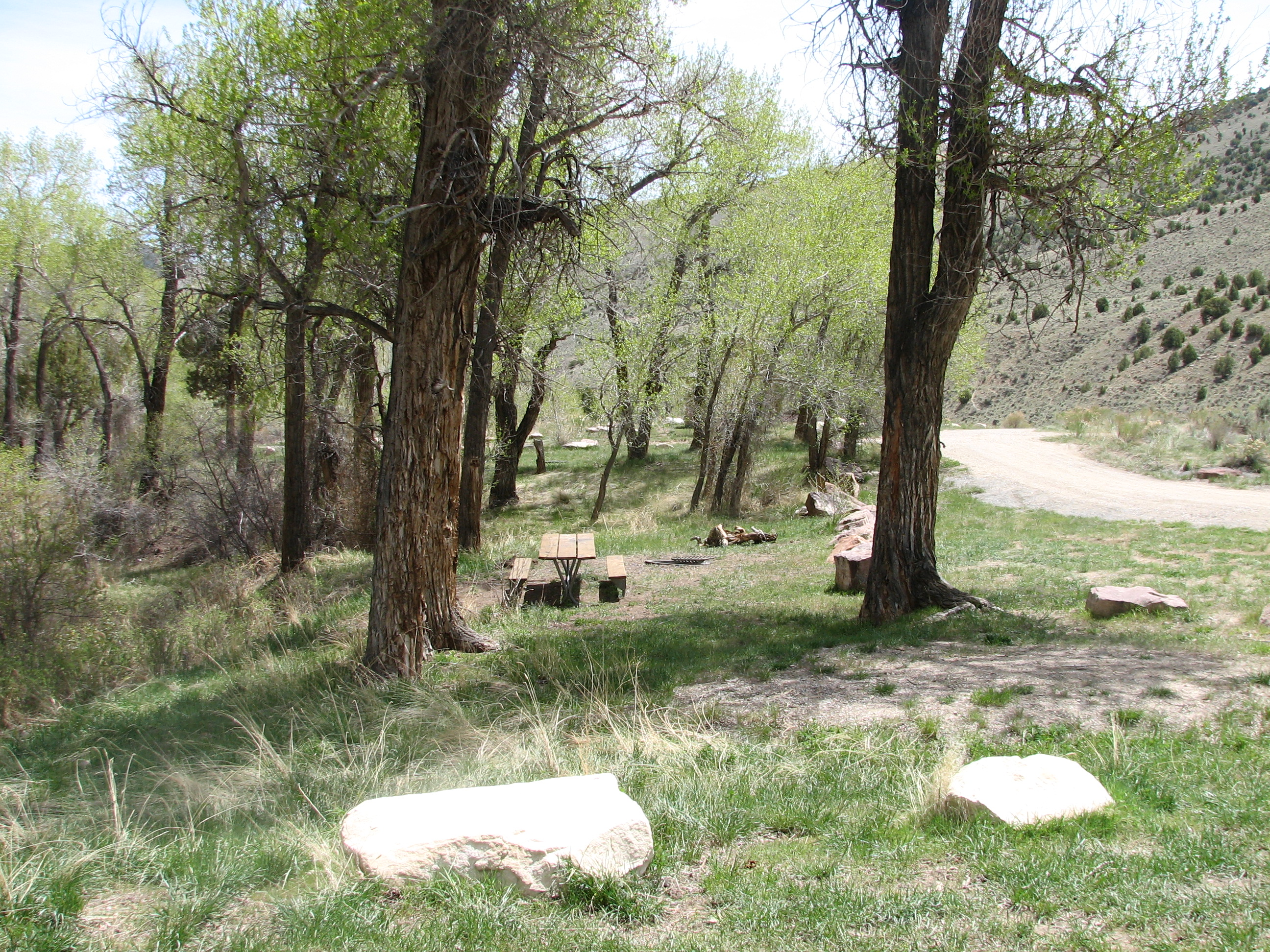 Photo of a site at the Manns Campground.