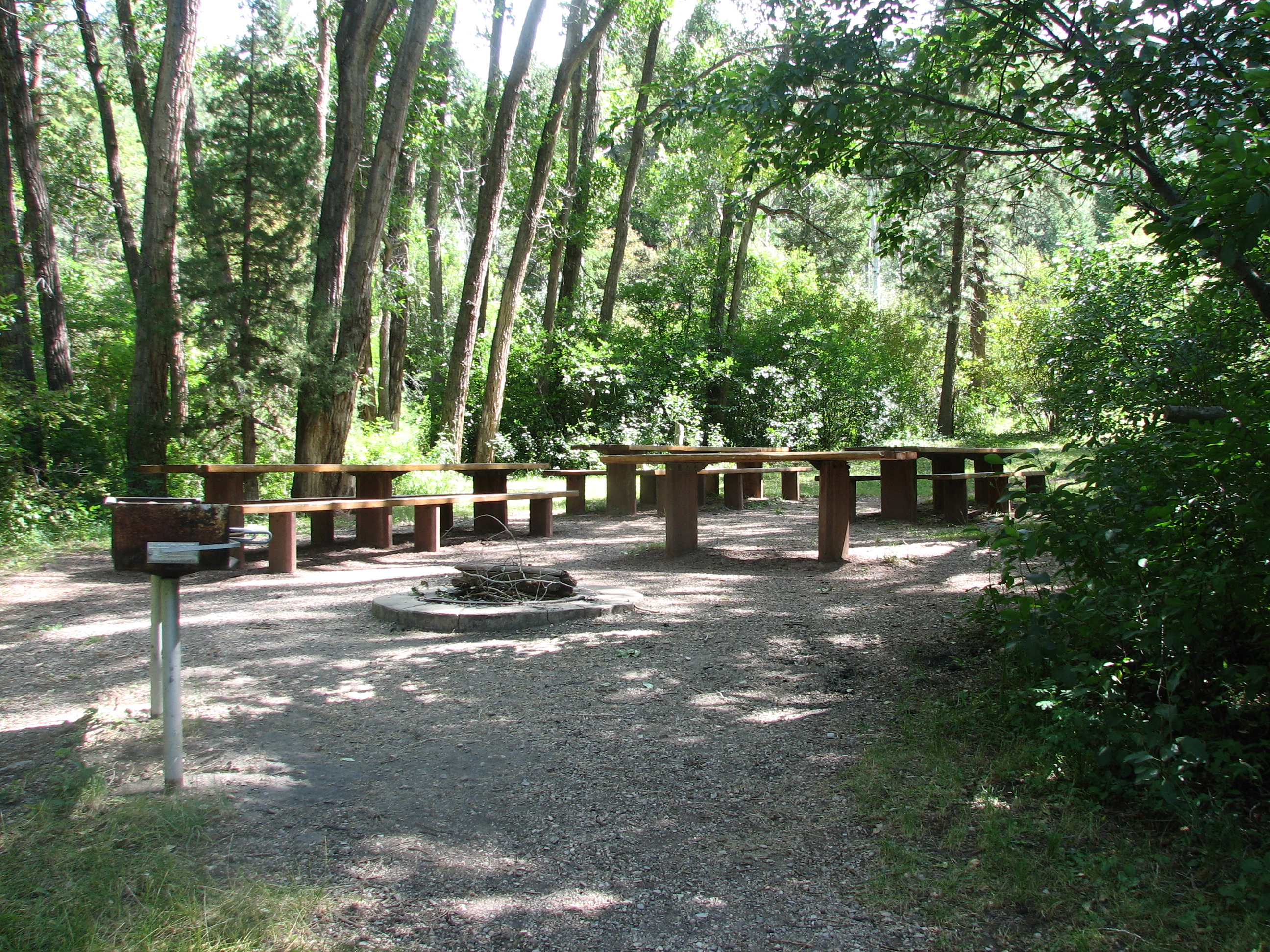 Photo of a site at the Palisades Picnic Area.