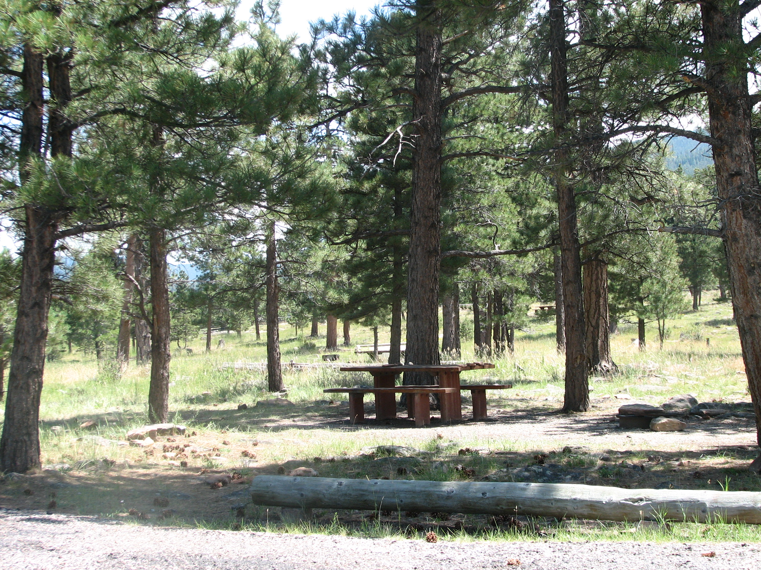 Photo of a site at the Red Canyon Campground.