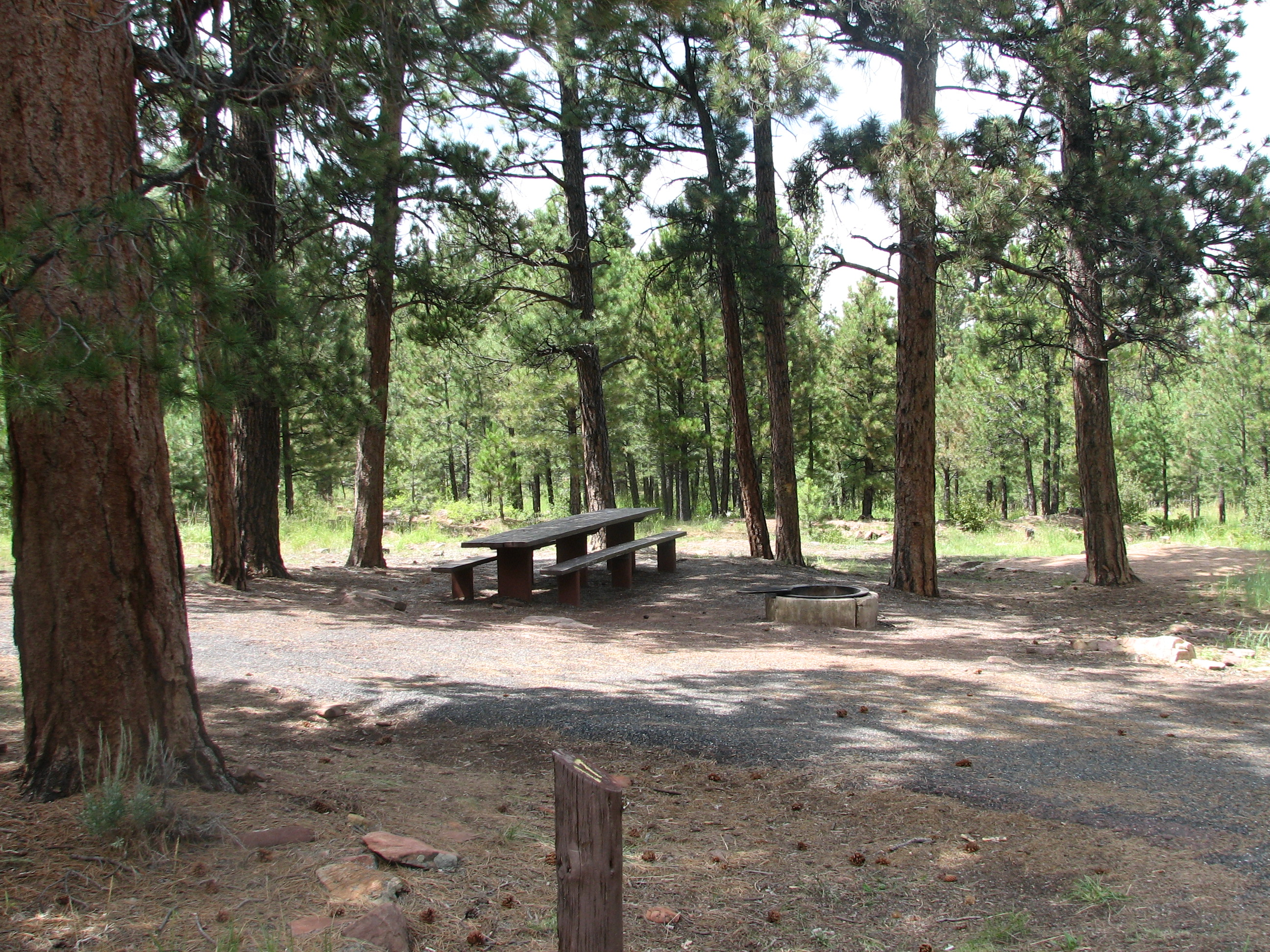 Photo of a site at the Skull Creek Campground.
