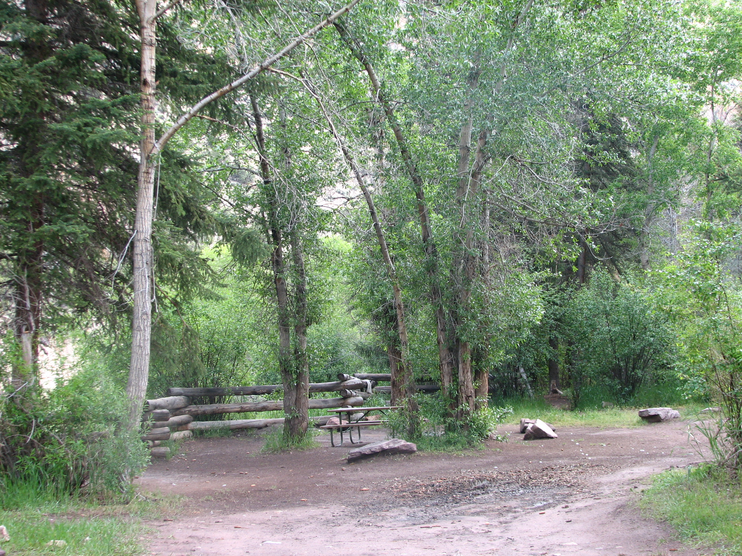 Photo of a site at the Willows Campground.