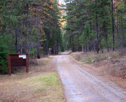 road at entry point to the campground