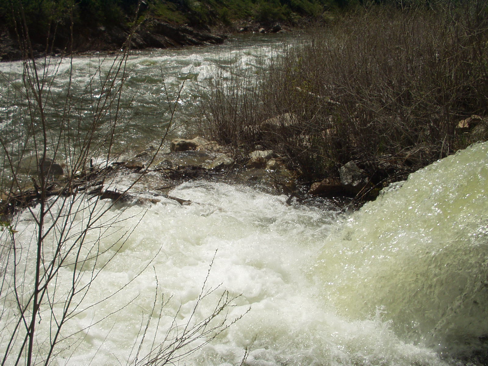 Boise NF - Water Flowing over a Culvert