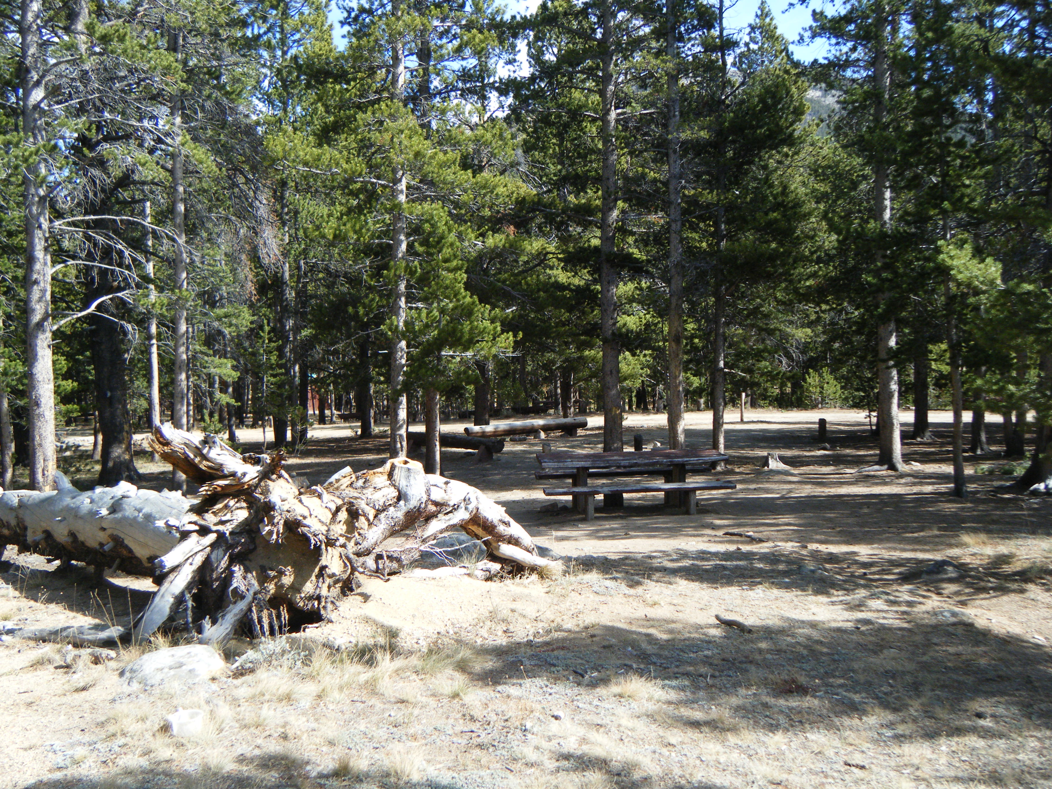 Photograph of Dickinson Creek Campground