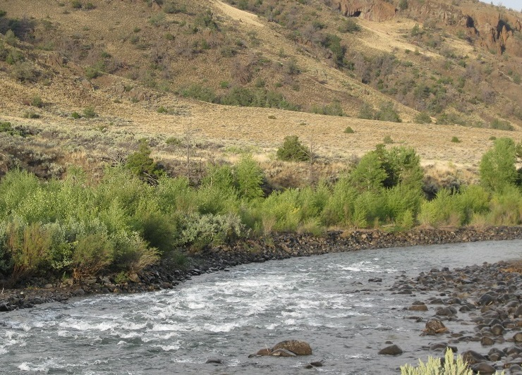 Photograph of the Shoshone River