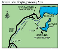 small map to Beaver Lake