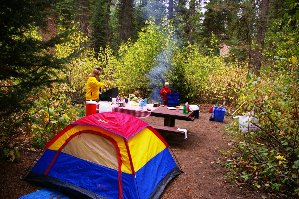 Campground Camping - by Ann Thornton