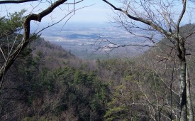 View from Starr Mountain in Cherokee National Forest