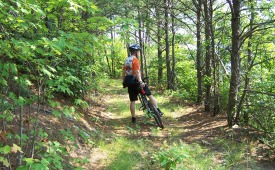 View of Mountain Biking in Cherokee National Forest