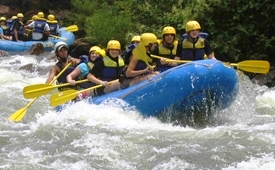View of Whitewater Rafting in Cherokee National Forest